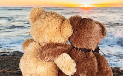 Project Teddy Bear